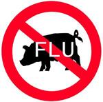 De gripe porcina a gripe A: el nombre importa