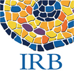 El IRB busca 'content manager'
